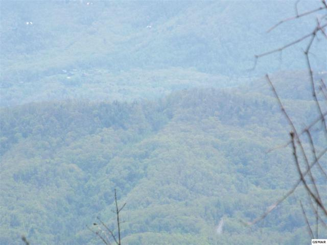 Green Top Road, Sevierville, TN 37876 (#215708) :: Billy Houston Group