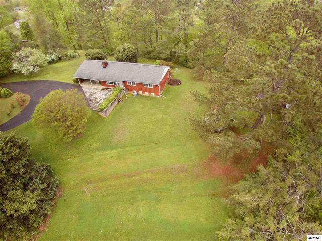 209 N Riverview Circle, Sevierville, TN 37862 (#215745) :: Colonial Real Estate