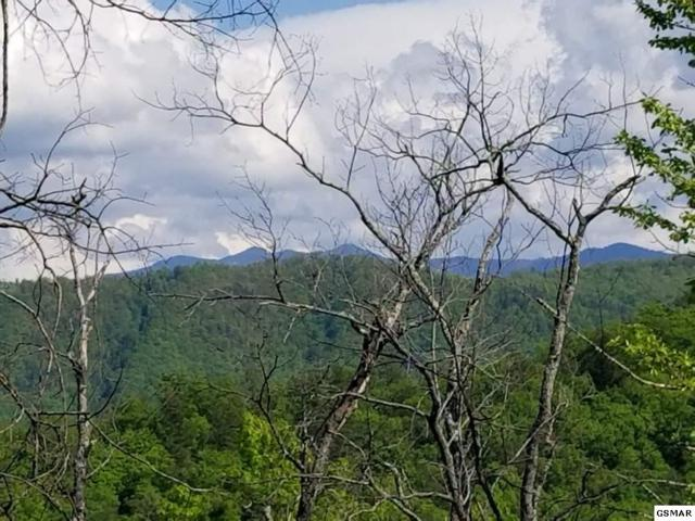 Lot 22 Mountain Dreams Way, Sevierville, TN 37876 (#216014) :: Billy Houston Group