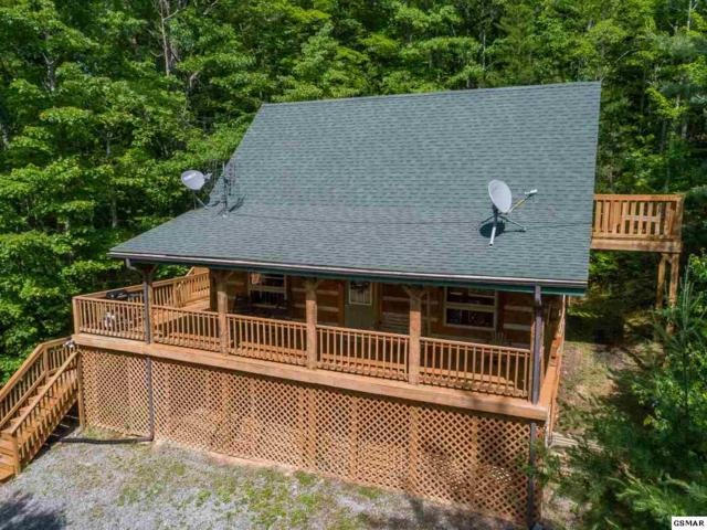 3205 Stepping Stone Drive Heart 2 Heart, Sevierville, TN 37862 (#216126) :: Billy Houston Group