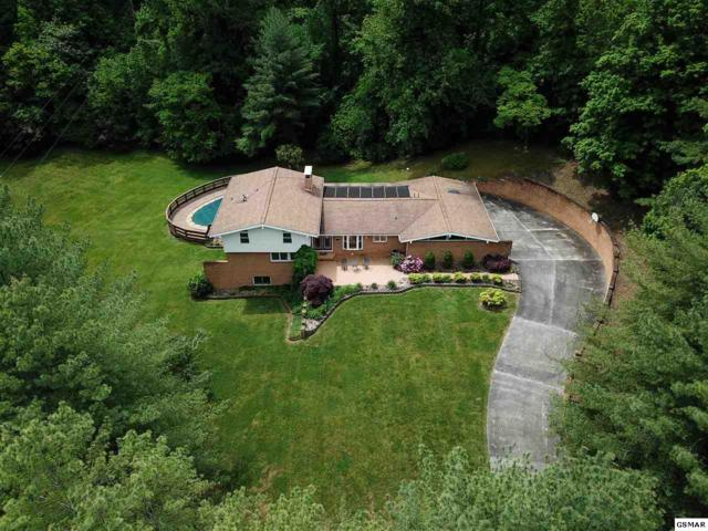 158 Castle Heights, Newport, TN 37821 (#216138) :: SMOKY's Real Estate LLC