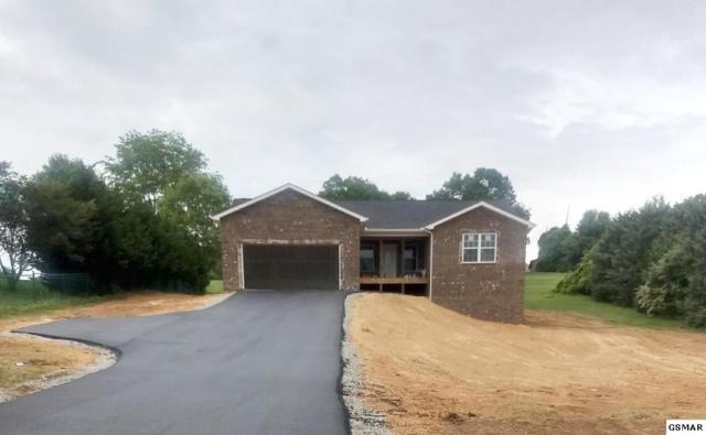 3326 River Pointe Circle, Kodak, TN 37764 (#216215) :: SMOKY's Real Estate LLC