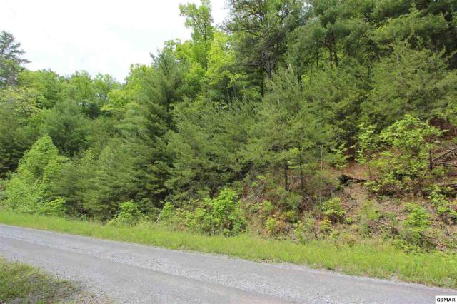 Lot 11 Sugar Maple Way, Del Rio, TN 37727 (#216220) :: Billy Houston Group