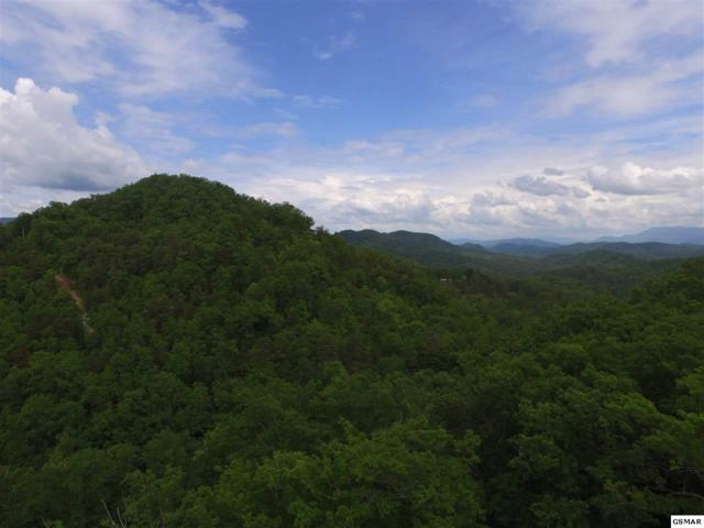Parcel 038.03 Bear Mountain Way, Sevierville, TN 37876 (#216285) :: Billy Houston Group