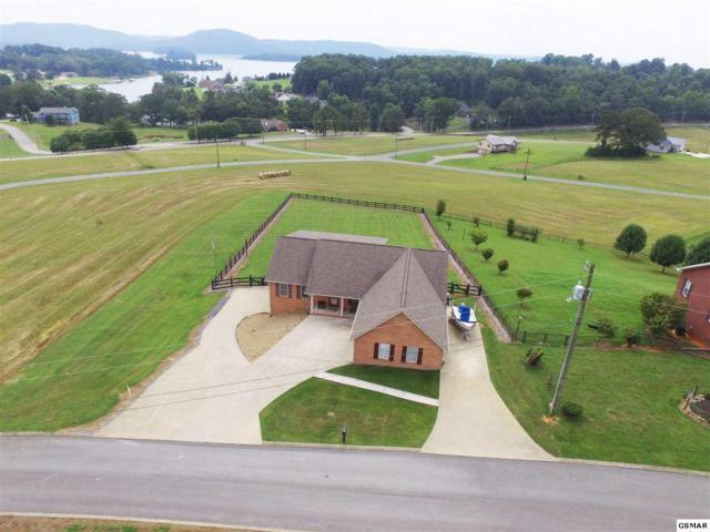 311 Pocahontas Lane, Rutledge, TN 37861 (#216300) :: Billy Houston Group