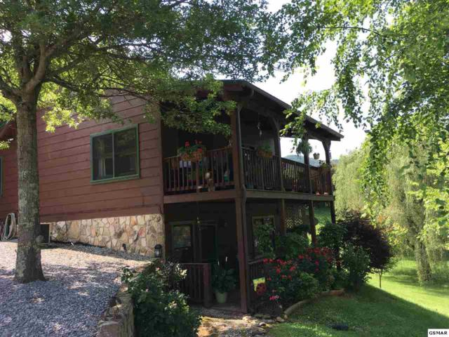 3470 Mattox Cemetery Road, Sevierville, TN 37862 (#216444) :: Colonial Real Estate