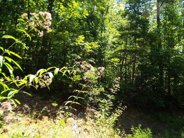 Lot 0009 Dove View Road, Sevierville, TN 37876 (#216578) :: The Terrell-Drager Team