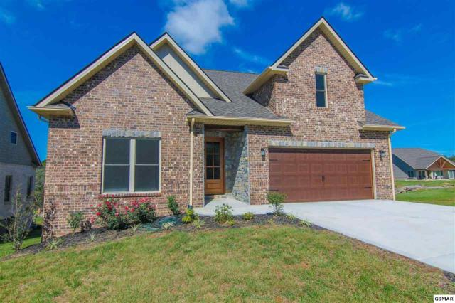 709 Waters Edge, Dandridge, TN 37725 (#216680) :: Colonial Real Estate