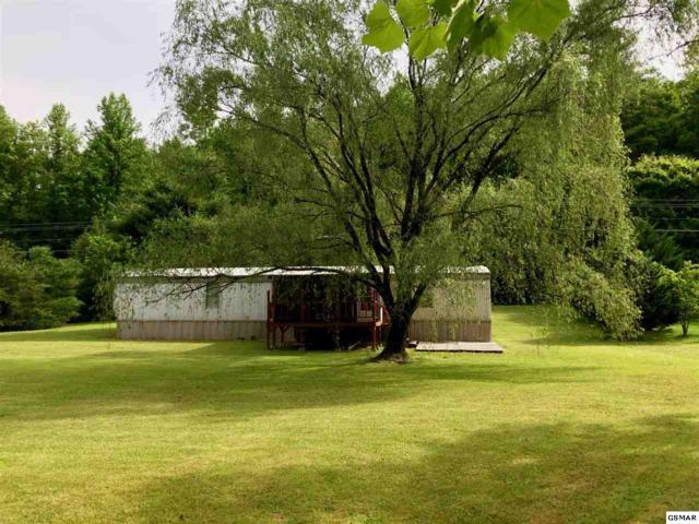433 Caney Creek Rd, Cosby, TN 37722 (#216706) :: Four Seasons Realty, Inc