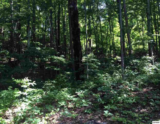 Lot 121E Settlers View Lane, Sevierville, TN 37862 (#216848) :: Four Seasons Realty, Inc