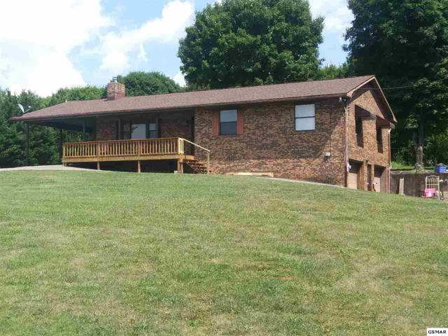 521 Academy Drive, Seymour, TN 37865 (#216852) :: Colonial Real Estate