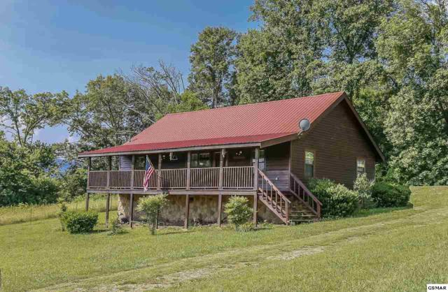 3018 Hatcher Mountain Rd Brown Cabin Wit, Sevierville, TN 37862 (#216890) :: Billy Houston Group