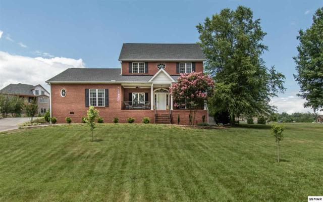 118 Bicentennial Dr, Jefferson City, TN 37760 (#216998) :: Billy Houston Group