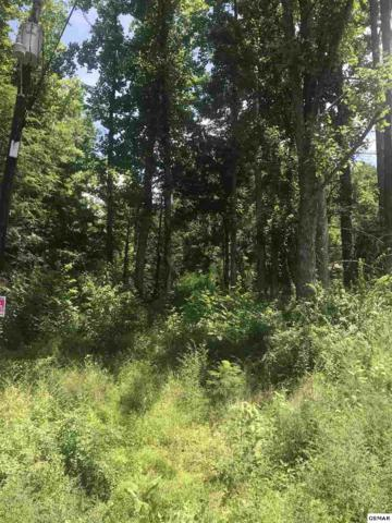 Hilltop Hilltop Hilltop Rd Lot 24 Ogle Hou, Gatlinburg, TN 37738 (#217029) :: Billy Houston Group