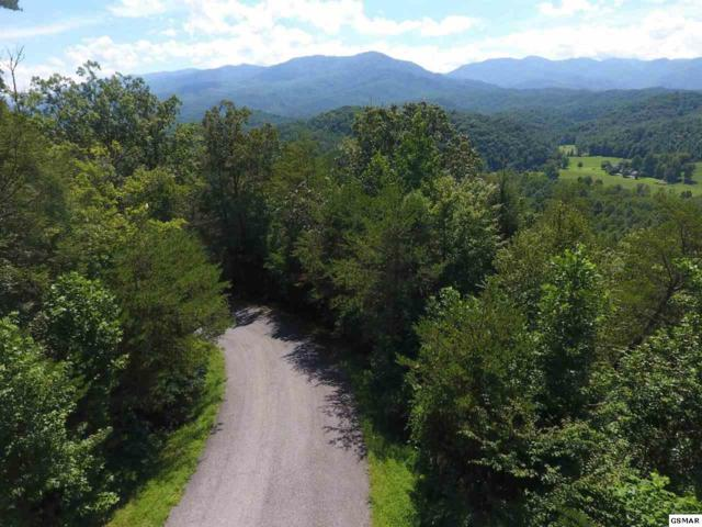 Lot 38 Fiddler South Way, Sevierville, TN 37876 (#217075) :: Colonial Real Estate