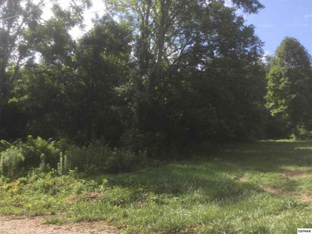 Lot 10 Butternut Way Off, Jefferson City, TN 37760 (#217182) :: Billy Houston Group