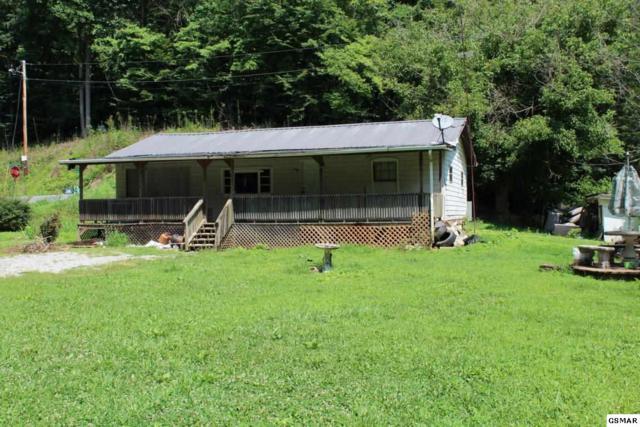 1023 S Shiloh Rd, Seymour, TN 37865 (#217214) :: Colonial Real Estate