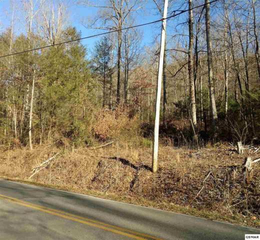 Lot 58 Alpine Dr, Sevierville, TN 37876 (#217264) :: Billy Houston Group