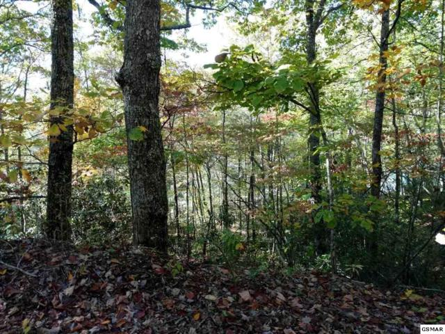 Lot 20 Linwood Ct, Sevierville, TN 37876 (#217281) :: Billy Houston Group