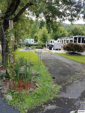 Lot #214  4229 E Parkway Vacant, Gatlinburg, TN 37738 (#217346) :: Billy Houston Group