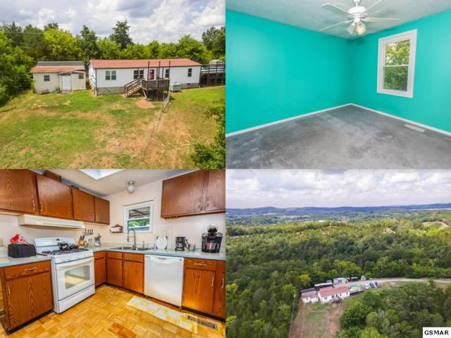 1149 Fini Way, Sevierville, TN 37876 (#217457) :: Colonial Real Estate