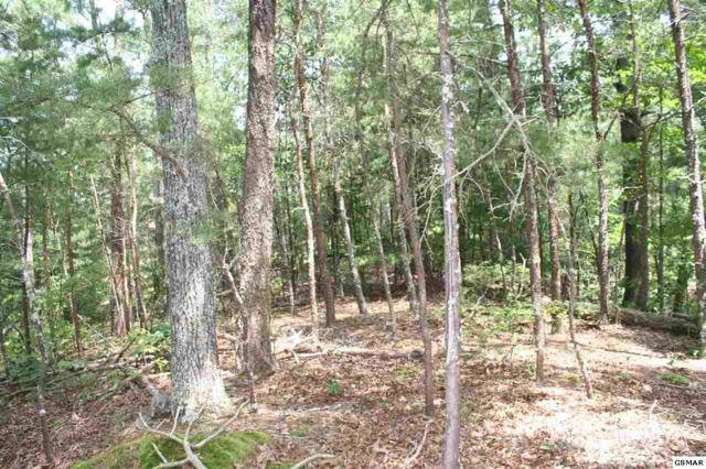 Mountain Trail Way, Sevierville, TN 37722 (#217543) :: Billy Houston Group