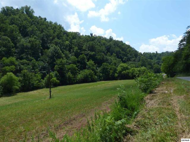 Parcel 23 Muddy Hollow Rd, Dandridge, TN 37725 (#217629) :: The Terrell Team