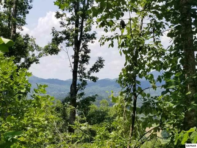 Tract 5 Clabo Mountain Lane, Sevierville, TN 37862 (#217692) :: Billy Houston Group
