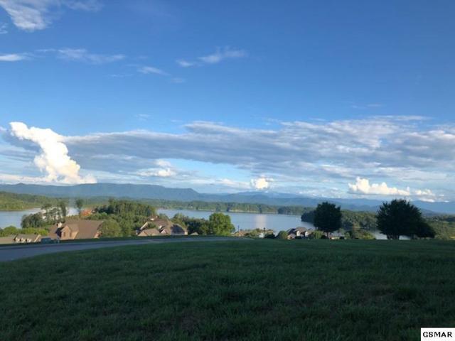 Lot 80 Serenity Overlook, Dandridge, TN 37725 (#217716) :: Billy Houston Group