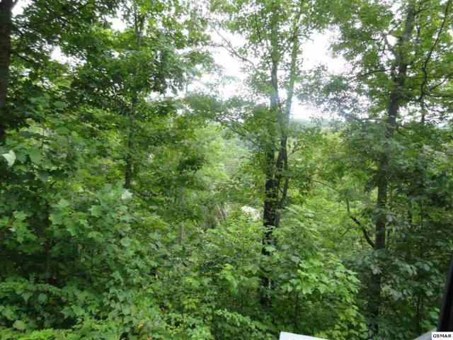 Lot 30 Coopers Hawk Way, Sevierville, TN 37862 (#217944) :: The Terrell Team
