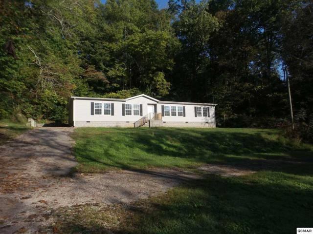 639 Brown Rd, Knoxville, TN 37920 (#218005) :: Colonial Real Estate