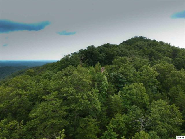 Lot#8 Overholt Trail, Sevierville, TN 37862 (#218035) :: Billy Houston Group