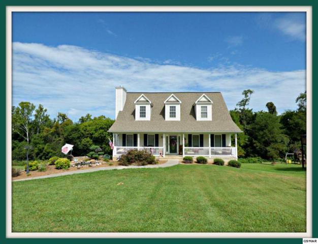 205 Fieldcrest Dr., Jefferson City, TN 37760 (#218071) :: Colonial Real Estate
