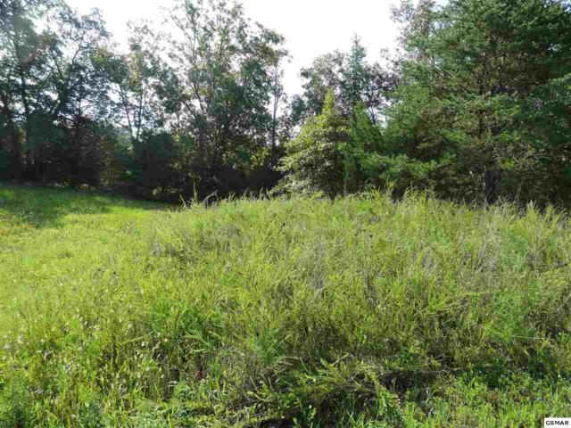 lot 98 Blue Herring Way, Sevierville, TN 37876 (#218072) :: Billy Houston Group