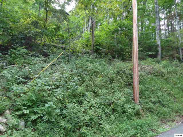 lot 1723 Piney Dr, Sevierville, TN 37876 (#218083) :: Billy Houston Group