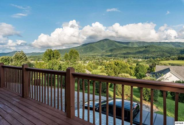 3114 Jh Headrick Dr, Sevierville, TN 37862 (#218134) :: Billy Houston Group