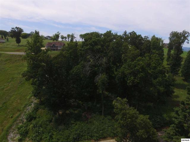 2090 Edgewater Sound, Morristow, TN 37814 (#218145) :: Four Seasons Realty, Inc