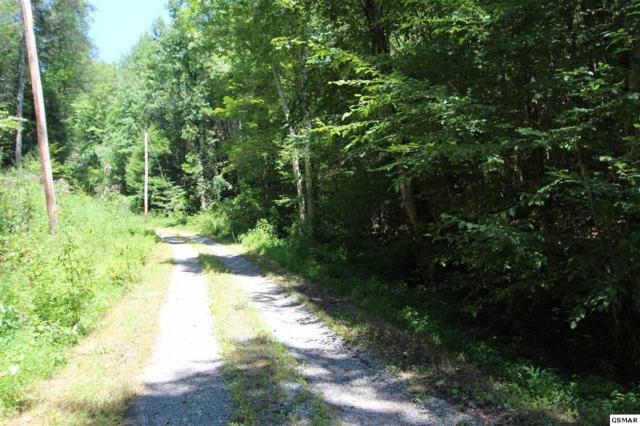 Parcel 055.00 Pine Hollow Way, Sevierville, TN 37876 (#218170) :: Billy Houston Group