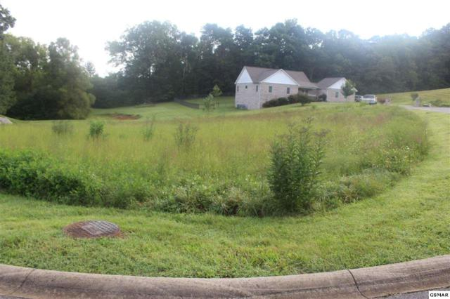 Lot 11 Niagra Dr, Sevierville, TN 37876 (#218366) :: Billy Houston Group