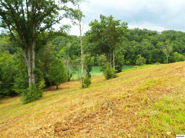 Lot 4 Stone Cove Way, Dandridge, TN 37725 (#218391) :: Jason White Team | Century 21 Legacy