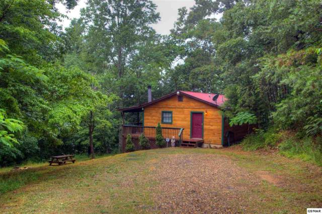 3133 Holly Court Way Bear Hooked, Cosby, TN 37722 (#218410) :: Prime Mountain Properties