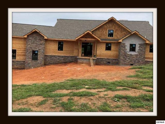 3432 Cove Meadows Dr Lodge Style in , Sevierville, TN 37862 (#218419) :: Four Seasons Realty, Inc