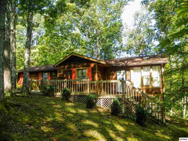 107 Dream Way, Sevierville, TN 37876 (#218429) :: Colonial Real Estate
