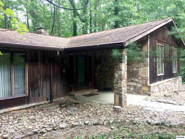 1659 White Oak Drive, Sevierville, TN 37862 (#218480) :: Colonial Real Estate