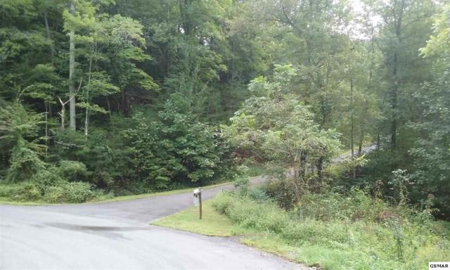Parcel 27 Breezy Road, Sevierville, TN 37876 (#218551) :: Four Seasons Realty, Inc