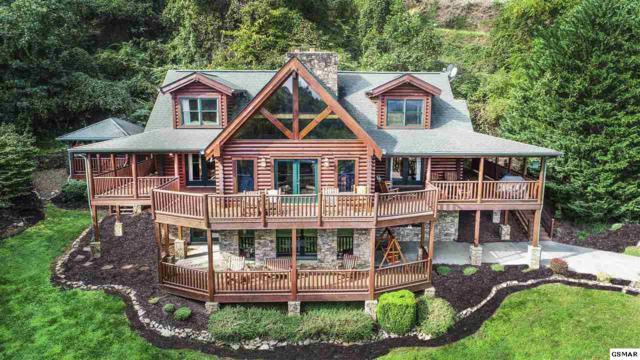 2414 Walnut Cove Way, Sevierville, TN 37862 (#219023) :: Prime Mountain Properties