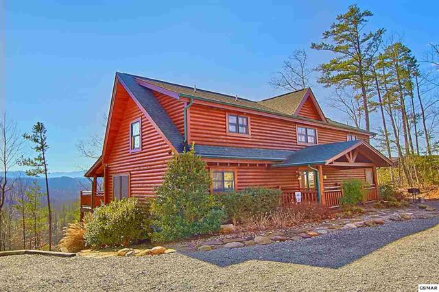 2969 Redtail Rd, Sevierville, TN 37862 (#219087) :: Colonial Real Estate