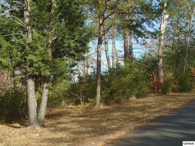 Lot 1 Cobblestone Lane, Dandridge, TN 37725 (#219089) :: Billy Houston Group
