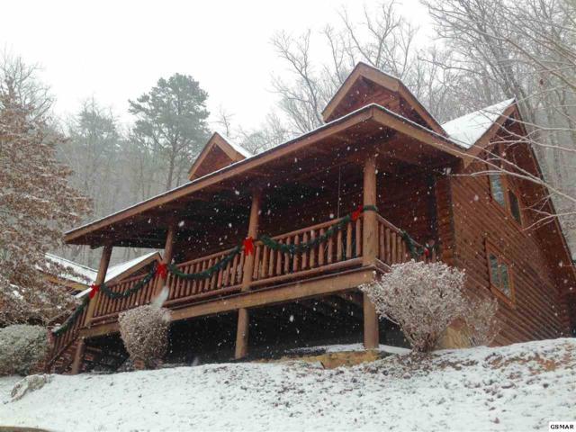 3225 Smoky Ridge Way, Sevierville, TN 37862 (#219103) :: The Terrell Team