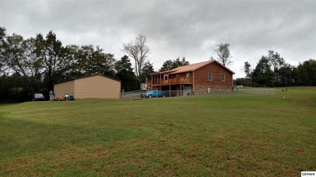 634 Marvin Way, Newport, TN 37821 (#219123) :: Colonial Real Estate